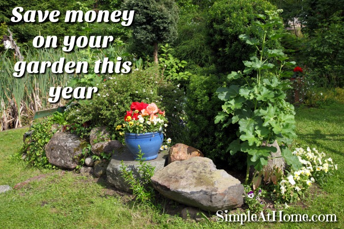 Want to save money on your garden this year?