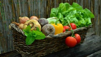 If They Grow It, They'll Eat it – Tips For Pre-School Edible Gardens