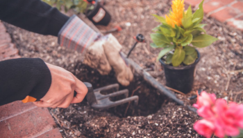 The Top Home Improvement Trends for Spring 2021