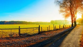 5 Tips to Make Land Purchase Easier and Faster